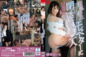 HODV-21475 - Maina Yuri - cover