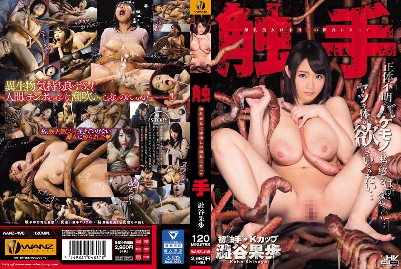 WANZ-498 - Kaho Shibuya - cover