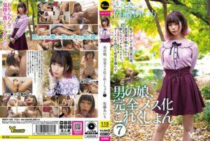 HERY-109 - Airi Sato - cover