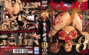 DDT-645 - Ryu Enami (RYU) - cover