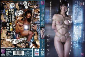 JBD-262 - Hinata Koizumi - cover